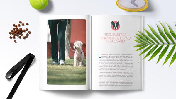Interior del libro ¡Feliz paseo! Las claves para disfrutar del paseo con tu perro